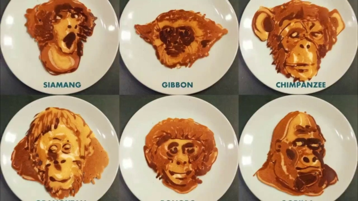 frühstücksideen nathanshields kinder illustration kollektion affen