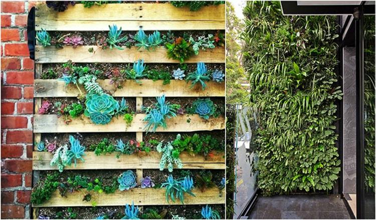 vertikalen Garten selber machen Anleitung vertikale Begrünung