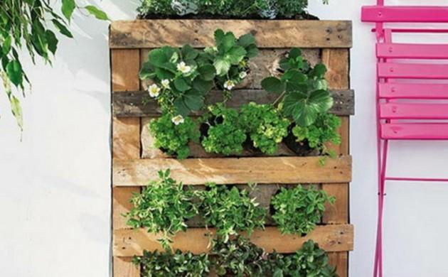 vertikaler-Garten-Anleitung-DIY-Projekt-aus-Paletten-vertikale-Begrünung