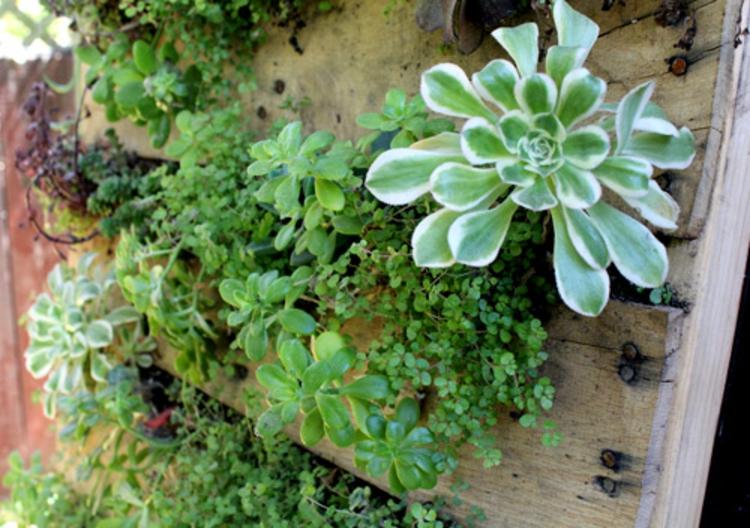 vertikaler Garten Anleitung Gartenmöbel aus Paletten vertikale Begrünung
