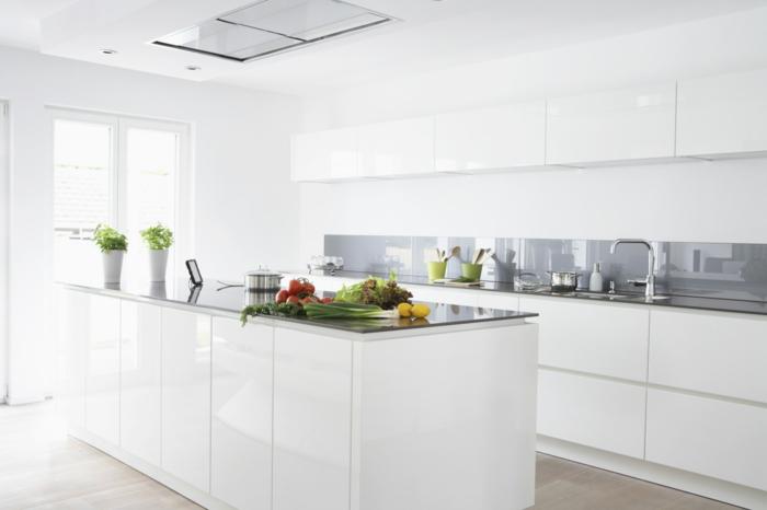 wohnideen küche weiße kücheninsel moderne küchenrückwand pflanzentöpfe