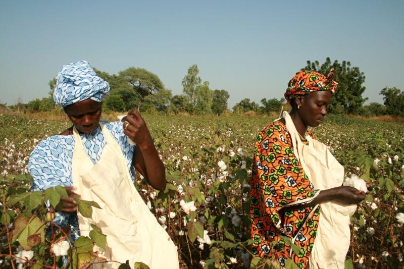 Fair Trade Kleidung Bio Baumwolle nachhaltige Mode