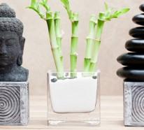 Feng Shui – Grundregeln und ihre Bedeutung für die Inneneinrichtung