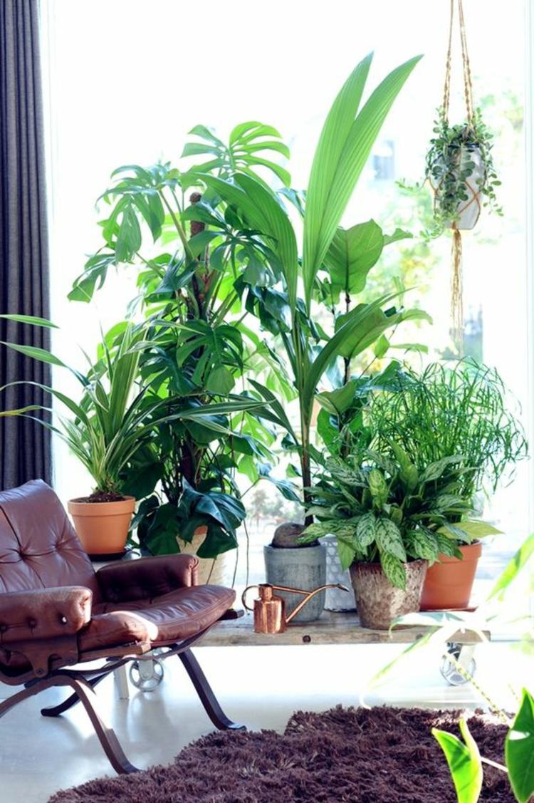 Feng Shui Bilder Zimmerpflanzen Terrassengestaltung positive Energie