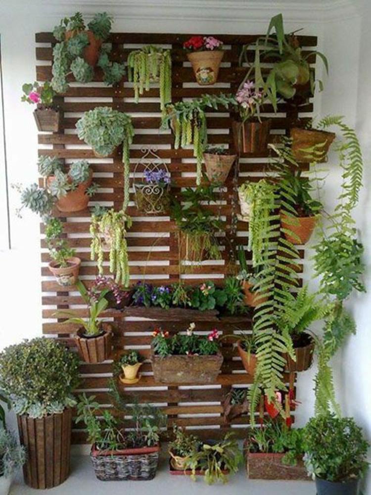 Feng Shui Terrasse vertikaler Garten positive Energie
