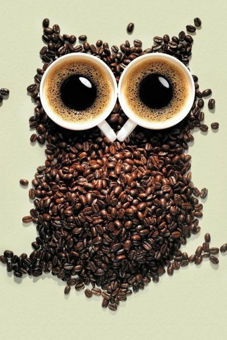 Kaffeesorten Kaffeegetränke Kaffee Wirkung Eule Kaffeebohnen