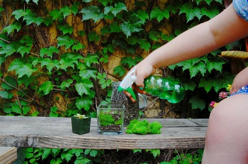 Sukkulente Deko Ideen zum Selbermachen DIY Projekte