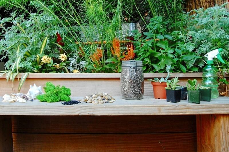Sukkulenten Deko Ideen zum Selbermachen Materialien Garten