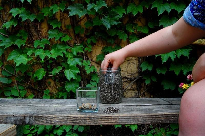 Sukkulente Deko Ideen zum Selbermachen einfache Bastelideen