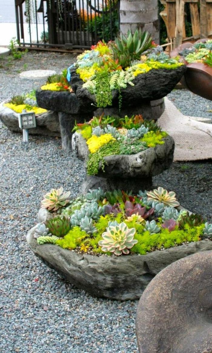 Garten Pflegeleicht Ideen : Sukkulenten Pflege  Wie pflegeleicht sind Sukkulenten eigentlich?
