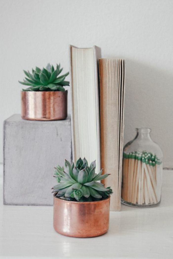 Sukkulenten Pflege Gartenpflanzen pflegeleicht Messing Töpfe