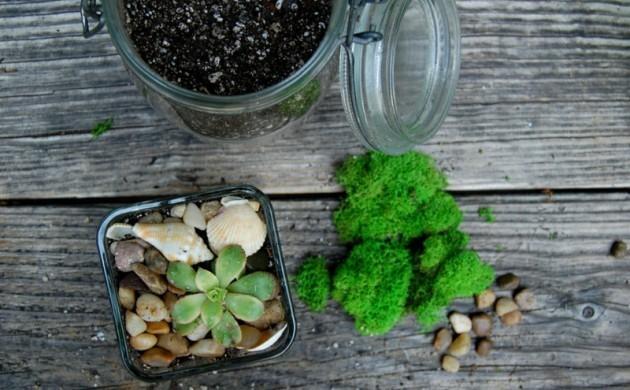 Deko ideen pflanzen kreative ideen f r design und wohnm bel for Pflanzen deko ideen