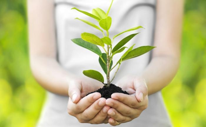 nachhaltige mode umweltfreundlich gesunder vorteile
