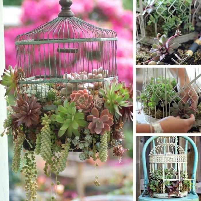 deko garten pflanzen käfig kreativ