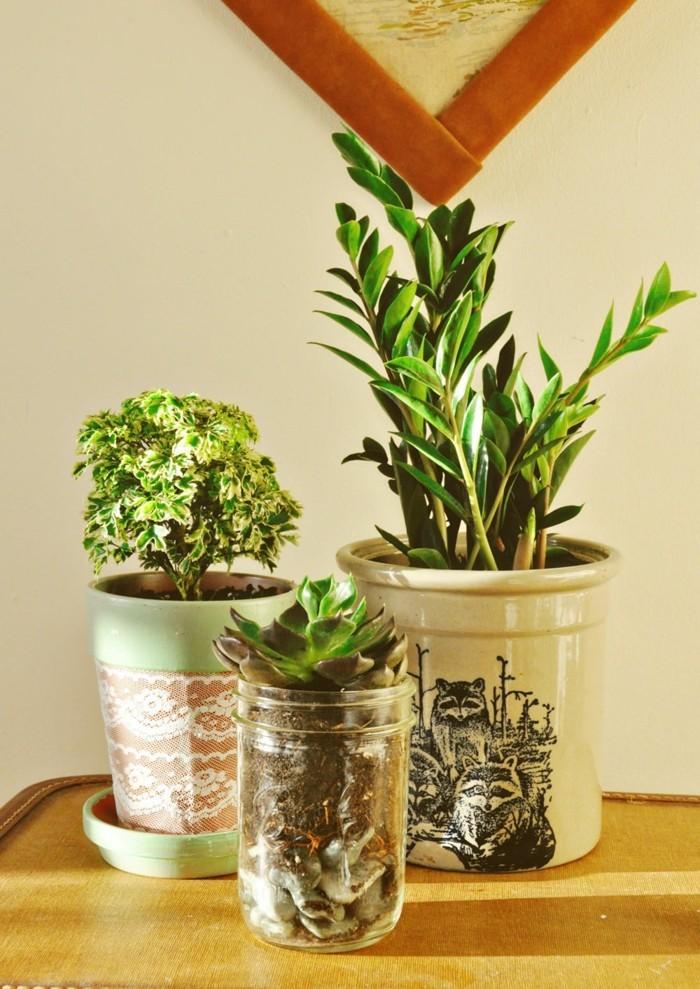 diy ideen einmachgläser dekoideen pflanzen