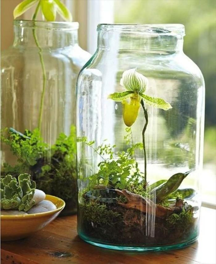 diy ideen einmachgläser pflanzenbehälter basteln
