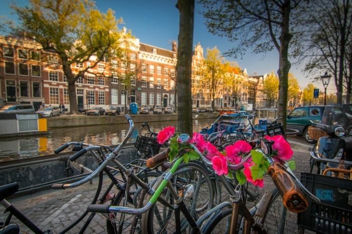 fahrrad weltreise niederlande amsterdam