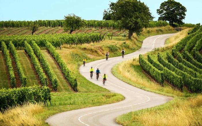 fahrrad weltreise weinbergen route frankreich