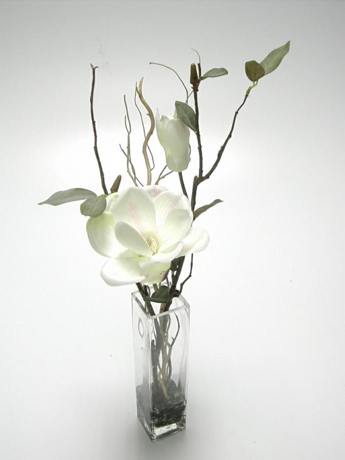 feng shui garten pflanzen magnolien
