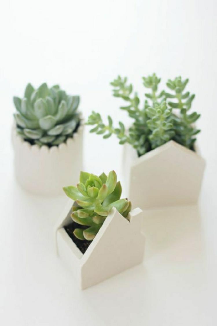 feng shui pflanzen asiatischer stil wohnideen pflegeleichte zimmerpflanzen
