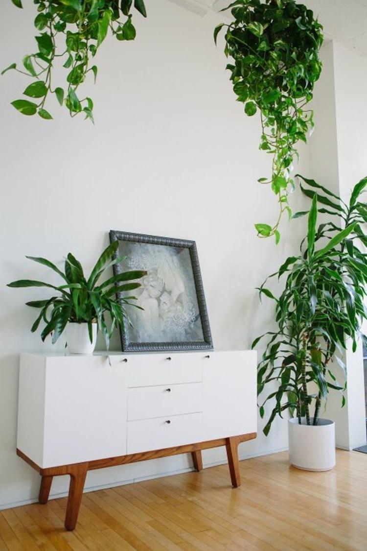 feng shui pflanzen wohnzimmer wohnideen pflegeleichte zimmerpflanzen