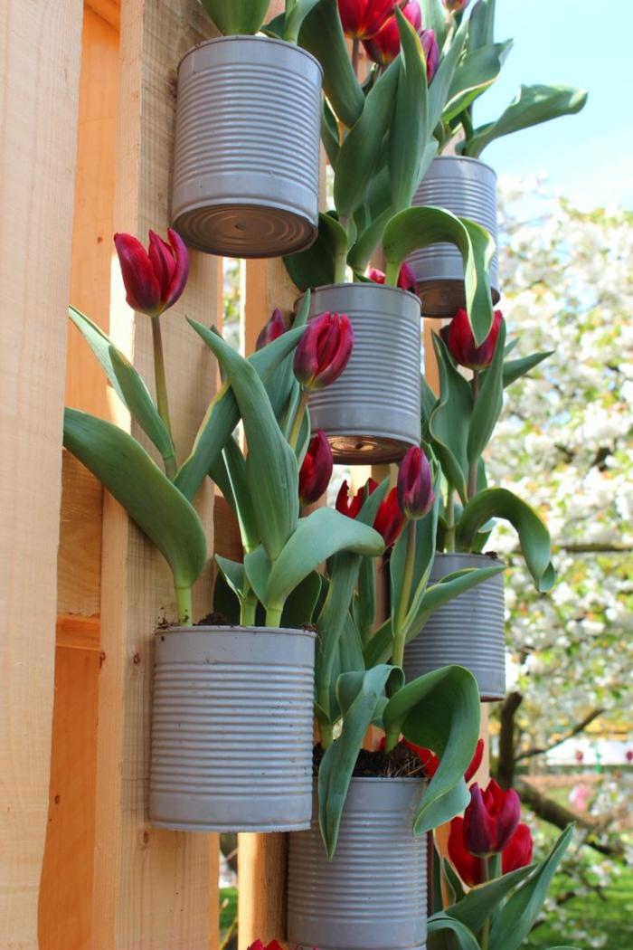 gartengestaltung blechdosen gartenzaun dekoration tulpen