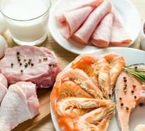 Die ketogene Diät – Pro und Contra