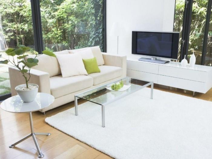 schönes wohnzimmer weißer teppich pflanzen fenster