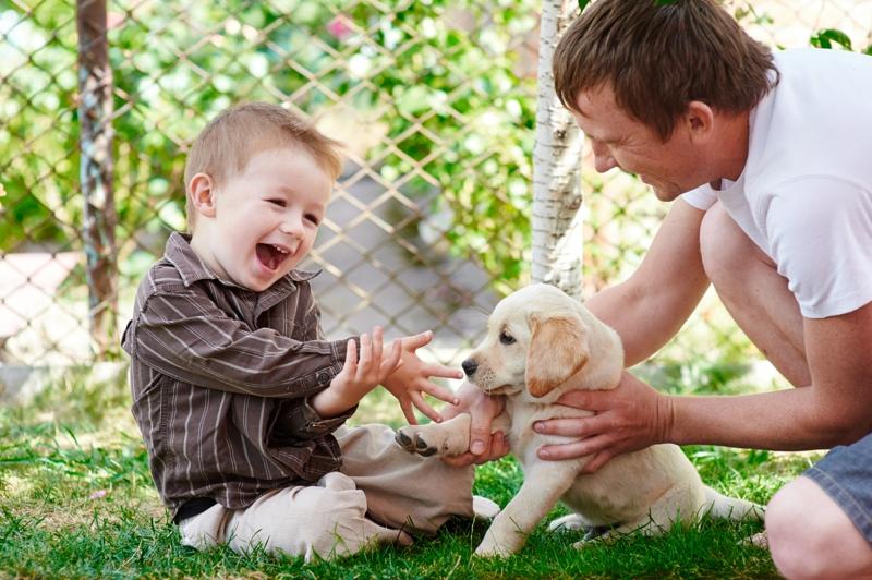 Angst vor Hunden Haustiere Hunderassen und Kinder