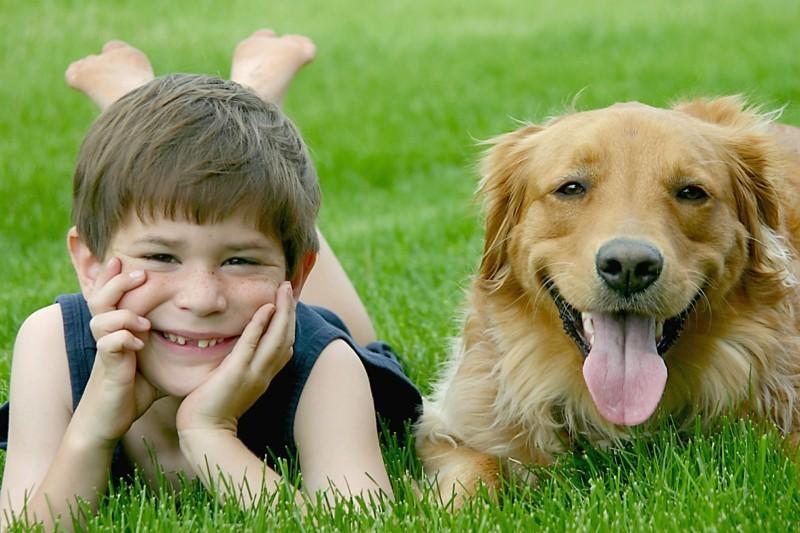 Angst vor Hunden Haustiere Kinder und Hunde