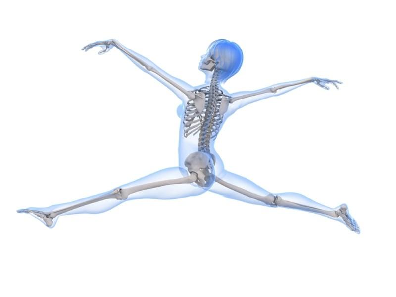 Fein Knochen Menschlichen Körper Ideen - Menschliche Anatomie Bilder ...