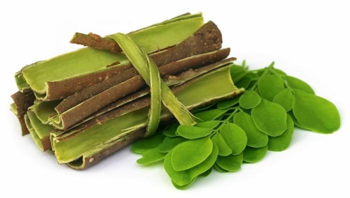 moringa blätter wirkung gesundheit lifestyle