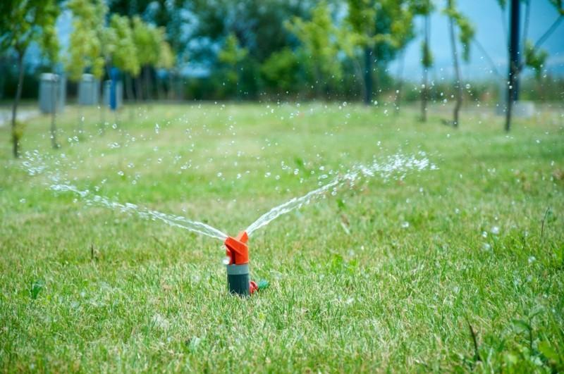 Rasenpflege Vorgartengestaltung Ideen Rasen düngen und bewässern