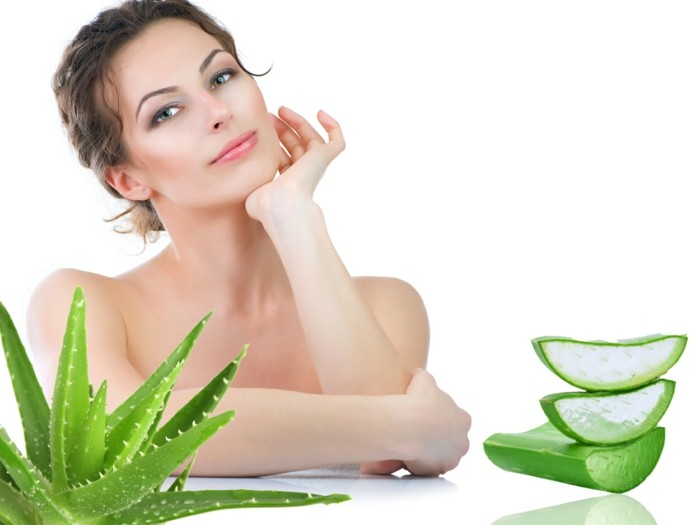 aloe-vera pflanze stück gel abgeschnitten ganz diagonal gegen bio kosmetik