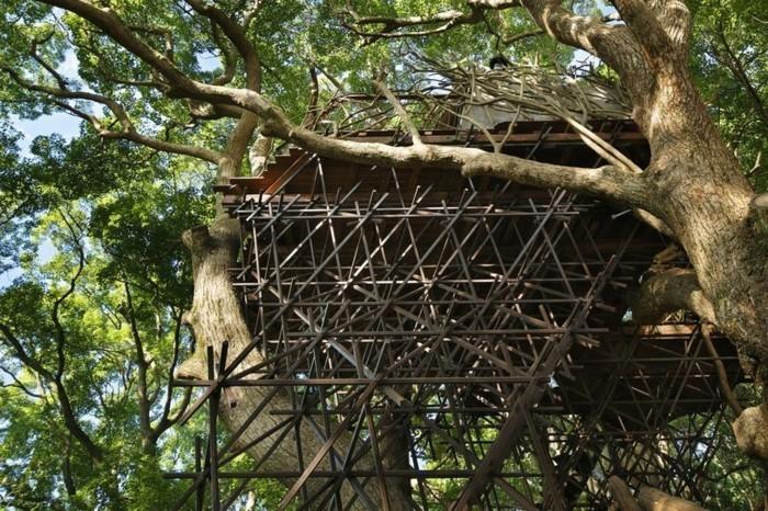 baumhaus bauen ökohäuser bauen teehaus