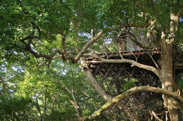 Baumhaus bauen - das Atami Teehaus im japanischen Wald