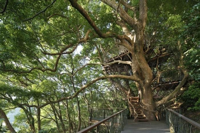 baumhaus bauen japan treehouse teehaus