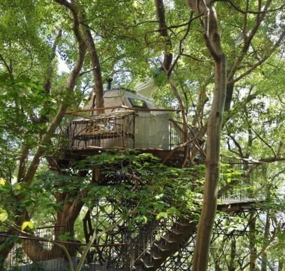 baumhaus bauen das atami teehaus im japanischen wald. Black Bedroom Furniture Sets. Home Design Ideas