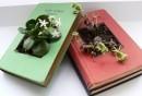 diy-ideen-büxher-pflanzenbehälter-basteln