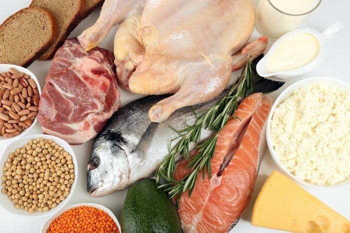 eiweiß diet rezepte lebe gesund proteine pflanzlich proteinreich fleisch fisch