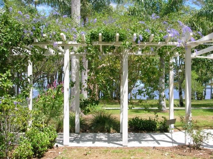 gartenideen pergola überdachungen gartenpflanzen