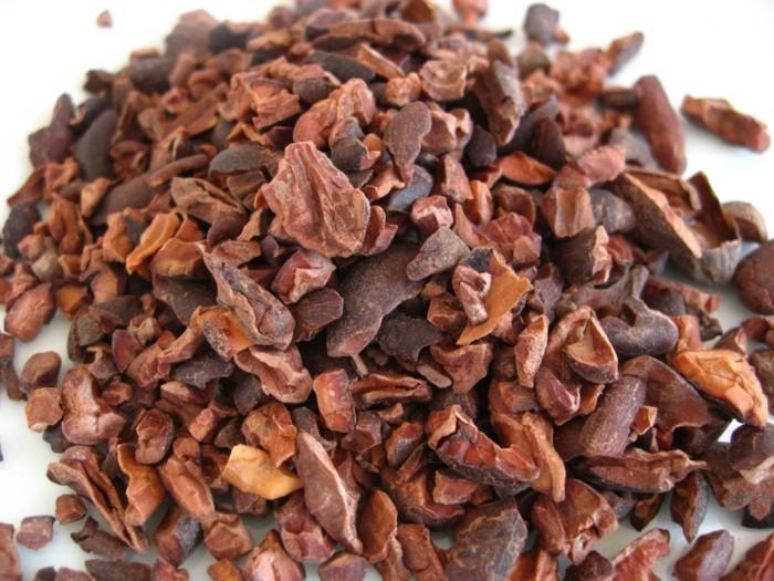 menschliche knochen lebe gesund organischer kakao gesund knochen
