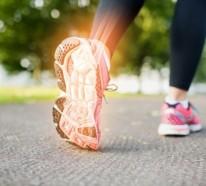 Menschliche Knochen – Welche Nahrungsstoffe sind für die Gesundheit unserer Knochen wichtig?