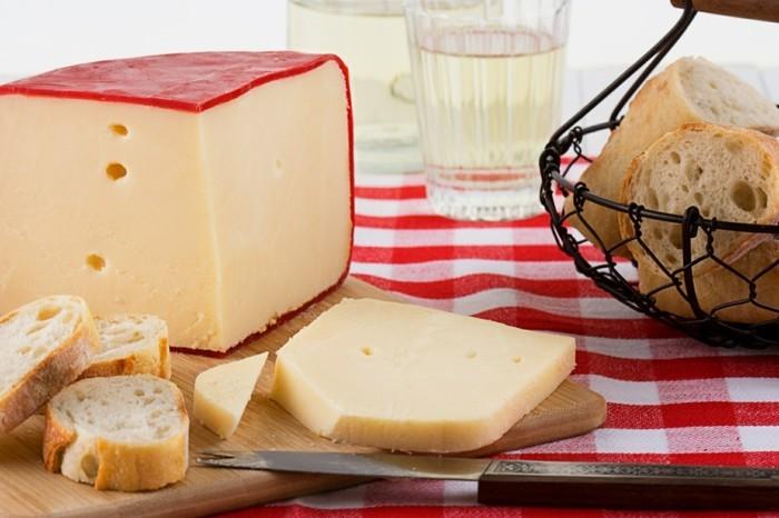menschliche knochen gauda käse gesund