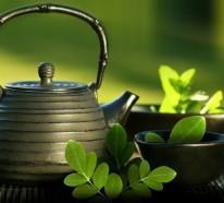 Moringa Blätter und deren wichtigsten und meist überraschenden Vorteile