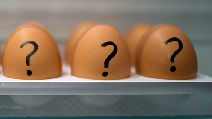 nachhaltiger Konsum brot bäckerei regional eier