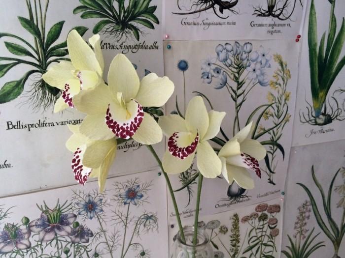 papierblumen basteln orchiedeen papierkunst
