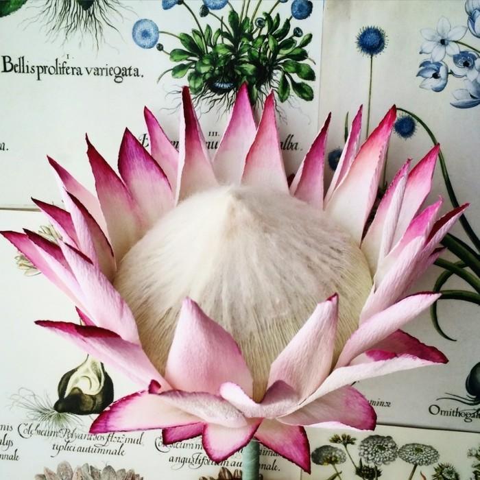 papierblumen basteln zarte blüte papierkunst
