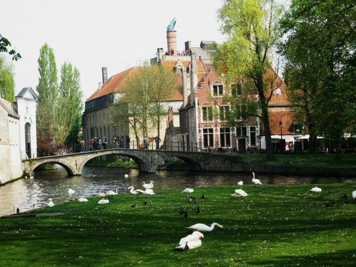 sehenswürdigkeiten brügge belgien daemmerung stadt mitte belgische waffeln marktplatz minnewater-see-der-liebe-schwan
