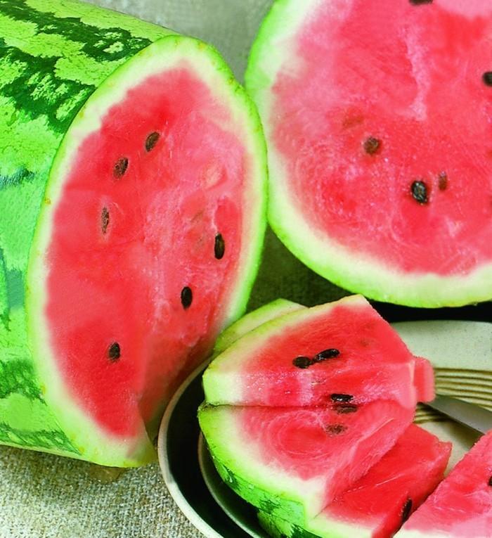 Sommer Rezepte wassermelone gurke salat lebe gesund titel2